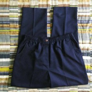 Alia Elastic Waist Blue Pull On Pants